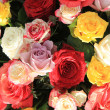 Mixed rose bouquet in bright colors — Stock Photo