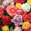 Mixed rose bouquet in bright colors — Stock Photo #8827512