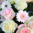 White and pink flower arrangement — 图库照片