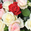 Mixed rose arrangement — Foto Stock