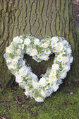 Heart shaped sympathy arrangement near a tree — Stock Photo