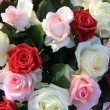 Mixed rose arrangement — Stok fotoğraf