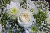 Detail of a white wedding bouquet — Stock Photo