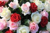 Mixed rose arrangement — Stock Photo