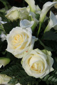 White roses in a floral arrangement — Stock Photo