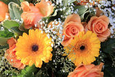 Yellow and orange gerbera and roses — Stock Photo