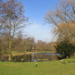 Park and pond - Foto Stock