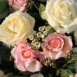 Pink and white roses — Stock Photo #9496473