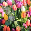Mixed spring tulips bouquet — Stock Photo #9496790