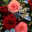 Big red and pink roses - Foto Stock