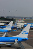 March, 24th Amsterdam Schiphol Airport planes on the gate, platf — Stock Photo