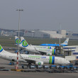 March, 24th Amsterdam Schiphol Airport airplanes waiting on the — Stock Photo #9731469