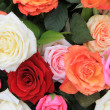 Rose bouquet in bright colors — Stock Photo #9820126