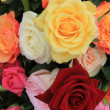 Rose bouquet in bright colors — Stock Photo #9820166