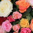 Rose bouquet in bright colors — Stock Photo #9820180