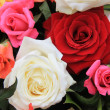Rose bouquet in bright colors — Stock Photo #9820202