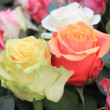 Rose bouquet in bright colors — Stock Photo #9820222
