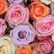 Stock Photo: Pastel rose wedding flowers