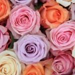 Pastel rose wedding flowers — Stock Photo