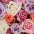 Foto Stock: Pastel rose wedding flowers