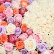Pastel rose wedding flowers — Photo