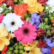 Mixed floral arrangement — Stock Photo
