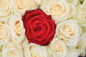 Red and white roses bridal arrangement — Stock Photo