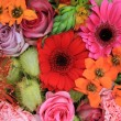 Red, pink and orange flower arrangement — Stock Photo