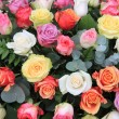 Rose bouquet in bright colors — Stock Photo #9925551