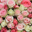 Pink roses bridal flower arrangement - Stock fotografie