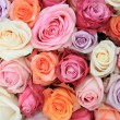 Pastel rose wedding flowers — Stock Photo #9925843