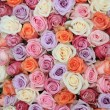 Pastel rose wedding flowers — Stock Photo #9925932