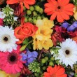 Mixed floral arrangement — Stock Photo #9926270