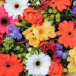 Mixed floral arrangement — Stock Photo #9926310