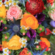 Mixed summer flowers — Stock Photo #9926515