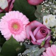 Pink rose and gerbera — Stock Photo