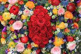 混合の夏の花 — ストック写真