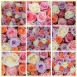 Pastel rose collage — Stock Photo #9978893