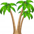 The vector tropical tree isolated on white background — Stock Photo