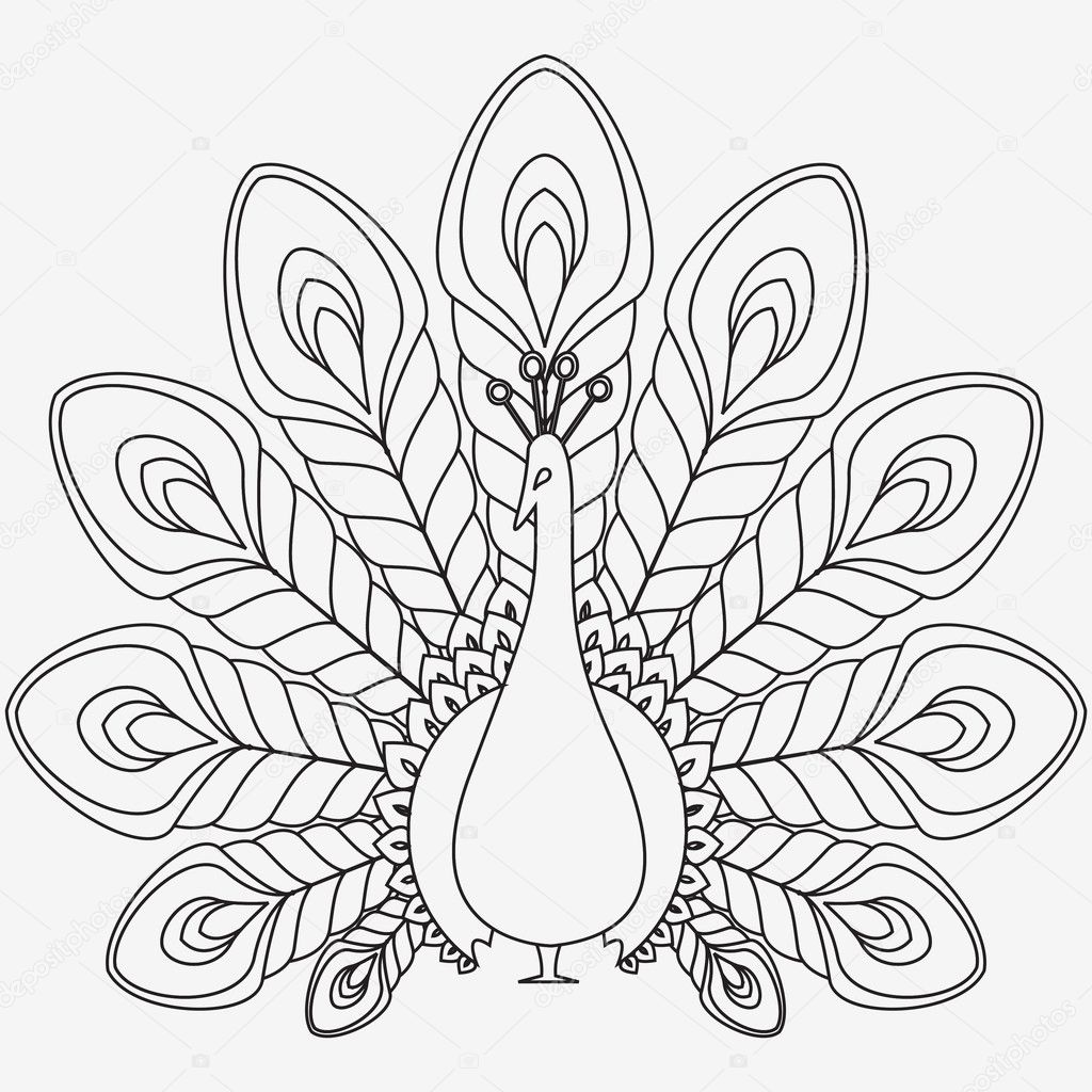 The abstract vector black peacock eps 8 — Stock Vector #9764782