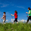 Foto Stock: Nordic walking - active family outdoor