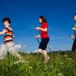 Stock fotografie: Nordic walking - active family outdoor