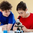 Kids examining preparation under the microscope — Stock Photo #8764746