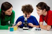 孩子们正准备在显微镜下研究 — 图库照片