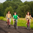 Foto Stock: Family riding bikes