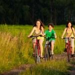 家族の乗馬のバイク — ストック写真