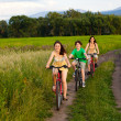 Family riding bikes — Stock Photo #9657233