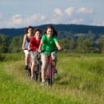 Family riding bikes — Stock Photo