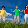 Stock Photo: Nordic walking - active family outdoor