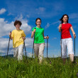 图库照片: Nordic walking - active family outdoor